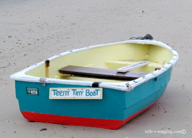Teeny Tiny Boat