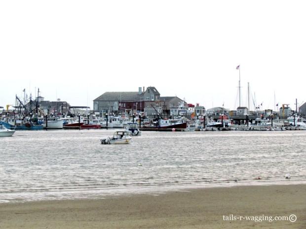 Beach walk to the harbor