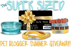 SUPER SIZED PET BLOGGER SUMMER GIVEAWAY!!!