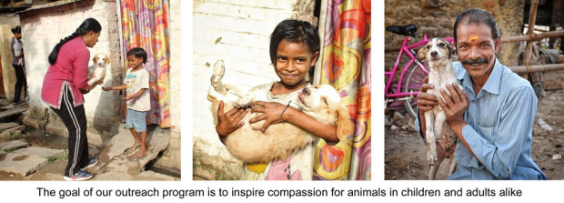 Inspiring Compassion