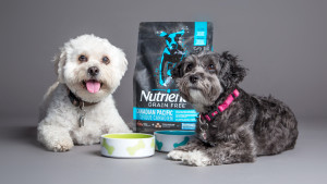 NUTRIENCE #SubZeroDifference FROM PETSMART – Our Take!