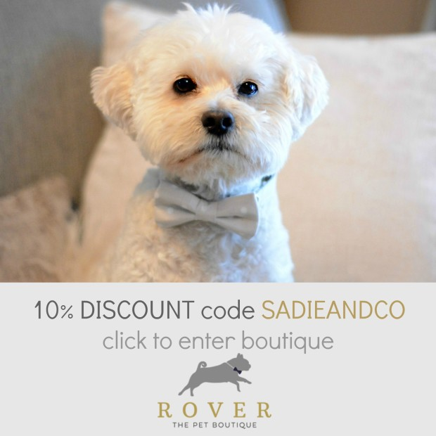 Elegant accessories for cats & dogs from ROVER