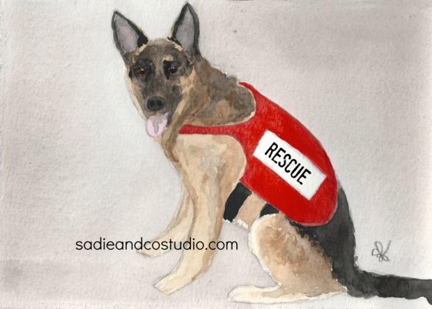 Rescue_wm