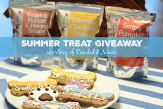 CANDID K NINES TREATS