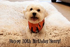 HENRY IS TEN!!!