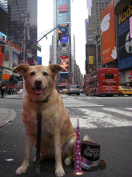 Mena in Times Square