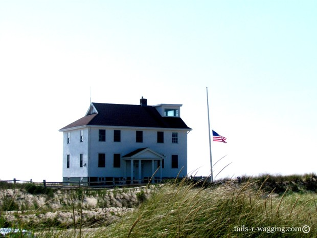 Provincetown 2013 239