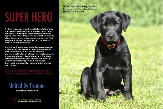Archer 36 x 24 Super Hero