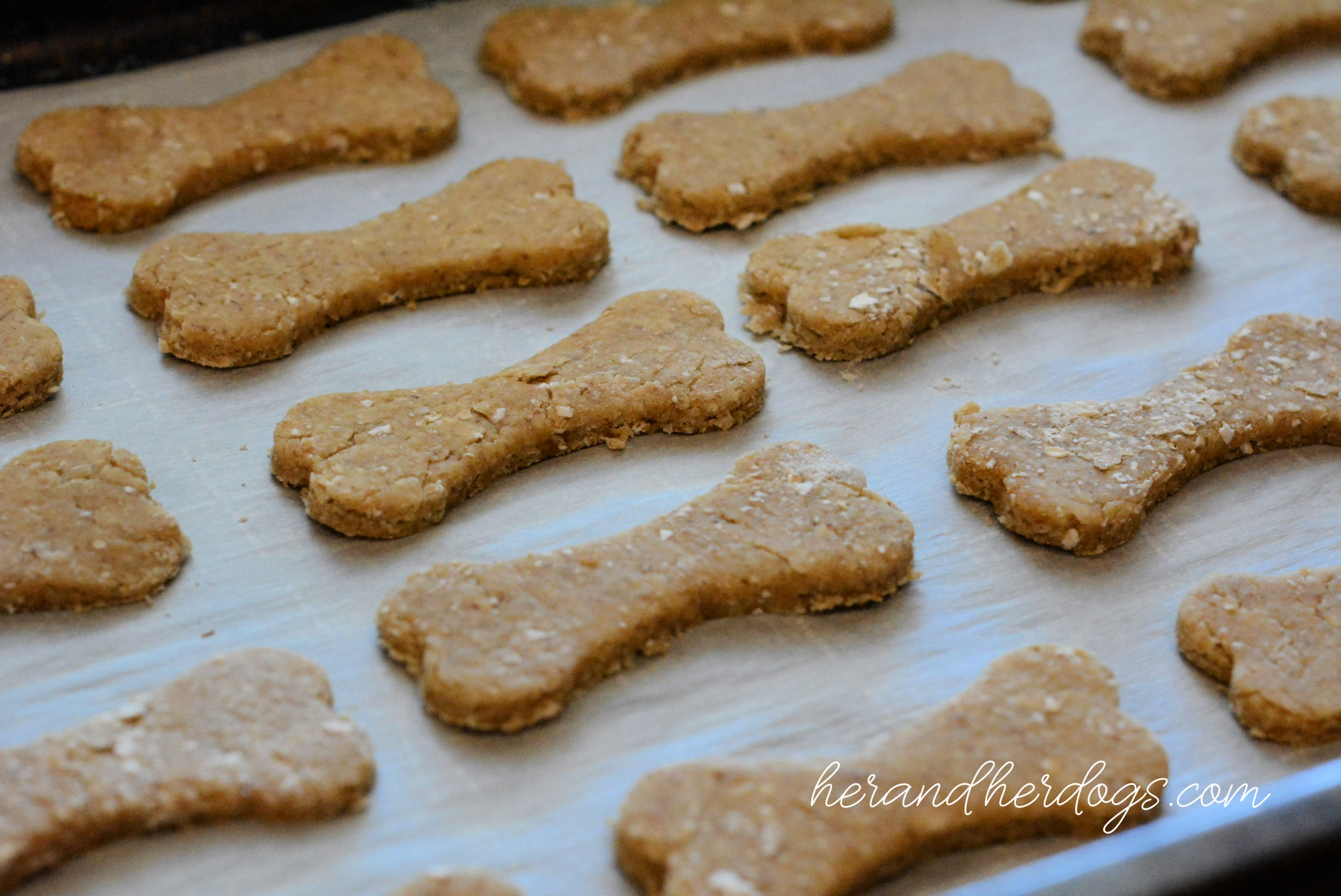 CAROB ICED DOG TREATS